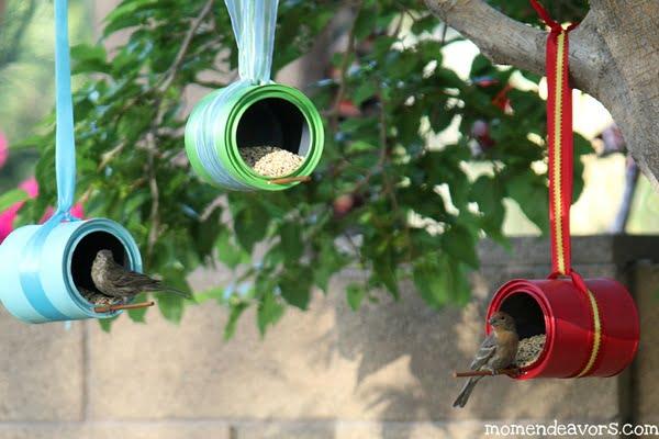Birds-on-DIY-Bird-Feeders
