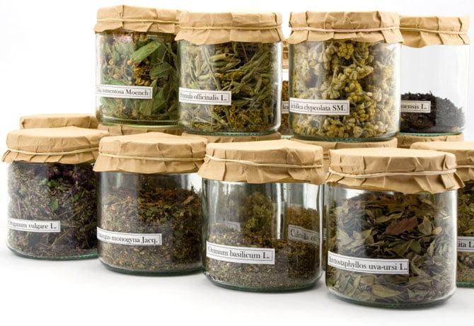 a herbalife aloe vera segít a fogyásbank
