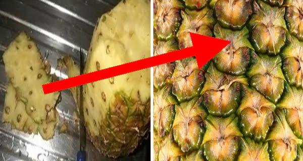 ananasz-heja