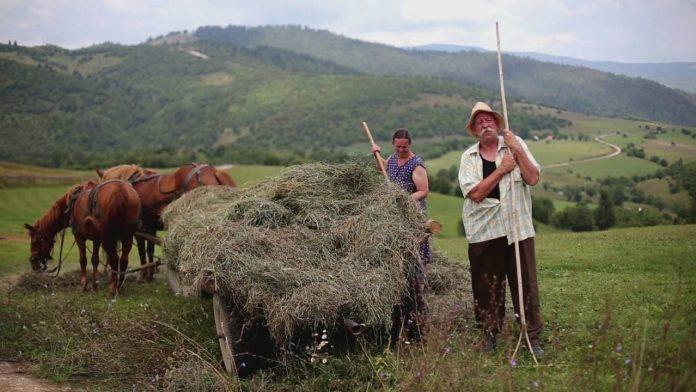 Tudtad, miért aprít kenyeret az erdélyi a levesébe? Íme a top 10 legjobb vicc az erdélyiekről!