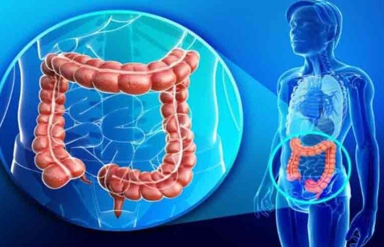 giardiasis makmiror kezelése
