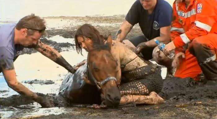 Órákig várt a sárba ragadt lova mellett ez a nő. Az utolsó pillanatban érkezik a segítség...