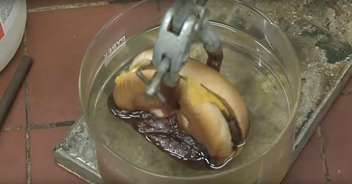 A kísérlet, ami milliókat sokkol a neten! Ha végignézed ezt a videót, tuti nem vásárolsz többé gyorséttermi kaját!