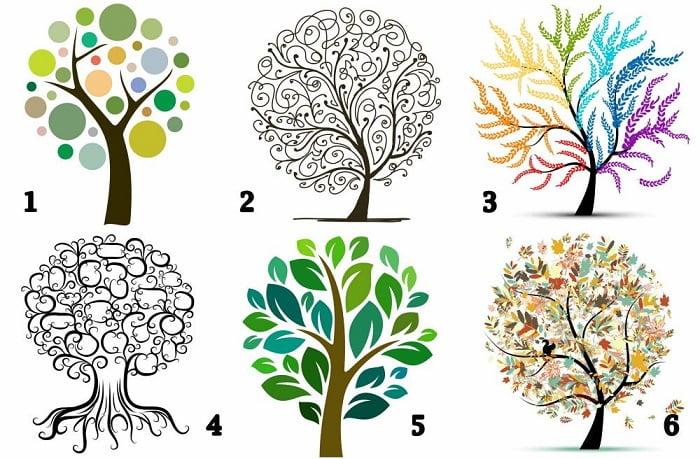 Fa-teszt: Válaszd ki azt a fát, amelyik tetszik és olvasd el mit árul el személyiségedről