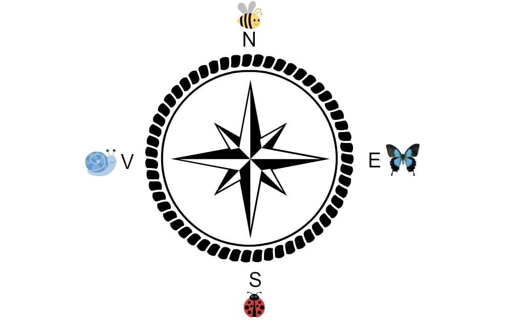Észak, Dél, Kelet, vagy netán Nyugat? Válassz ki egy égtájat a négy közül, és tudj meg többet a jövődről!