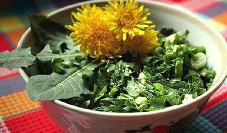 Számos betegségre jó lehet a gyermekláncfű-saláta. Így kell helyesen elkészíteni!