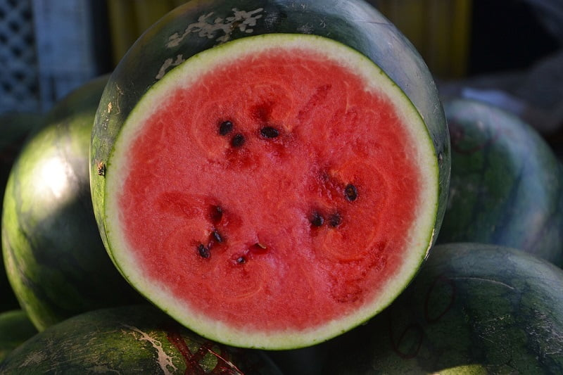 Hogyan válasszuk ki a legfinomabb görögdinnyét? A dinnyetermesztő elárulja mire kell odafigyelni!