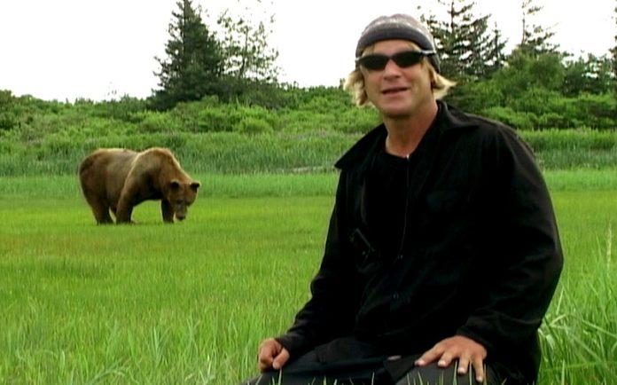 """""""Grizzly Man"""" története - a medverajongó, akit az általa szeretett állatok öltek meg"""