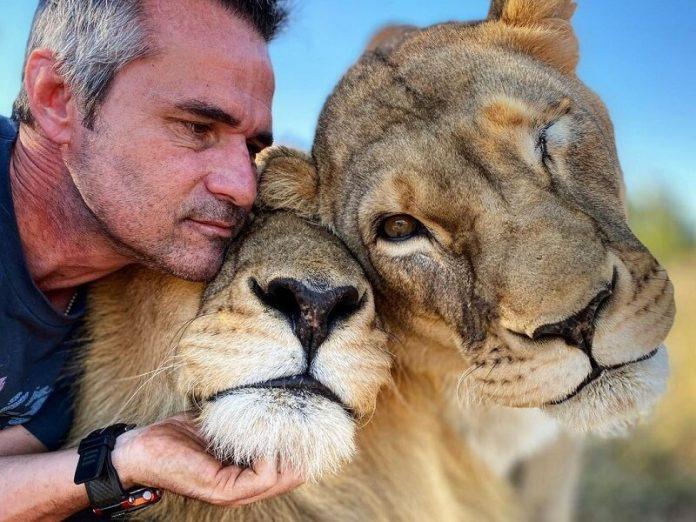 Kevin Richardson, az oroszlánsuttogó, aki együtt él a világ legveszélyesebbnek tartott ragadozóival